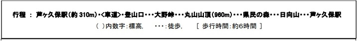 f:id:yoshinokaori:20190123164521j:plain