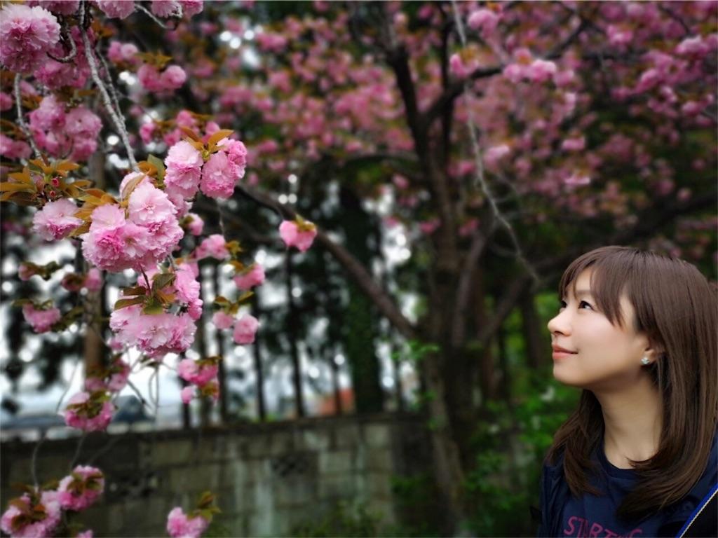 f:id:yoshinokaori:20190425141809j:plain