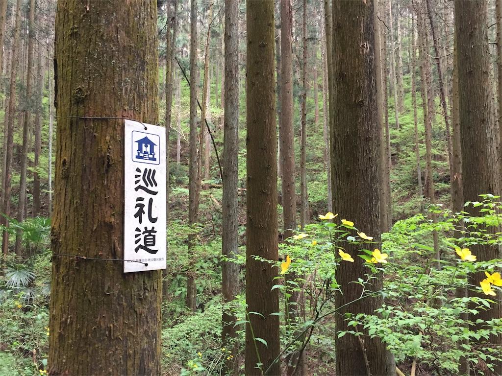 f:id:yoshinokaori:20190425175430j:plain