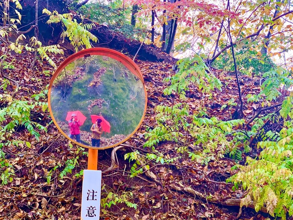 f:id:yoshinokaori:20191124131831j:plain