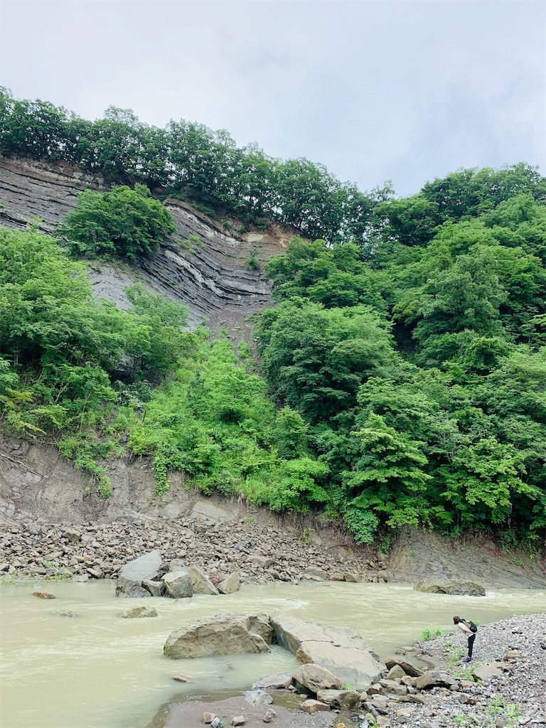 f:id:yoshinokaori:20200624113032j:plain