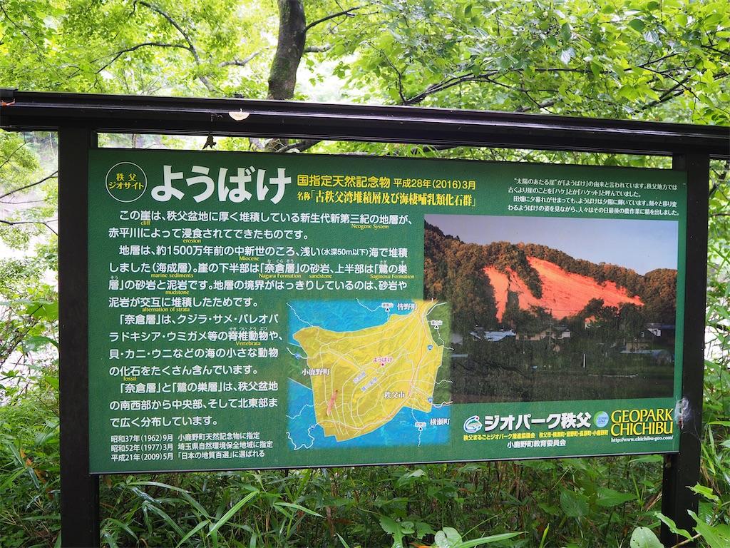 f:id:yoshinokaori:20200624115100j:plain