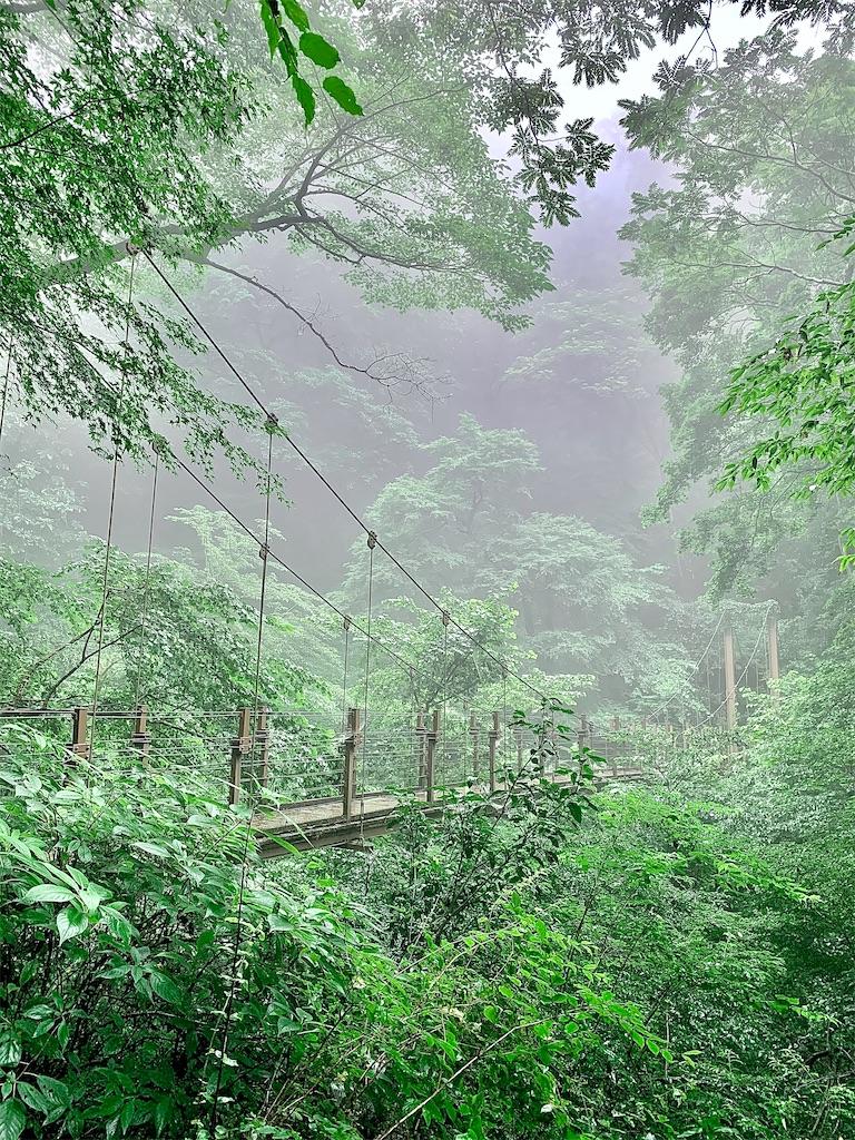 f:id:yoshinokaori:20200730101217j:plain
