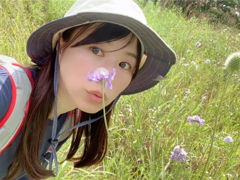 f:id:yoshinokaori:20200827124712j:plain