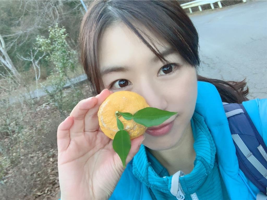 f:id:yoshinokaori:20210104145624j:plain