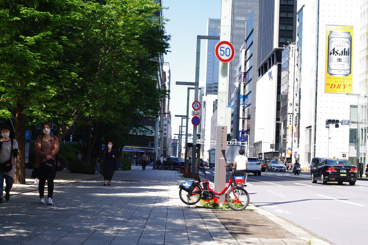f:id:yoshinori-hoshi:20090101000148j:plain