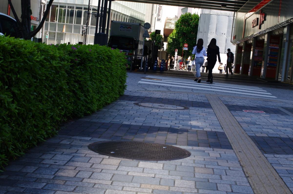 f:id:yoshinori-hoshi:20090101000200j:plain