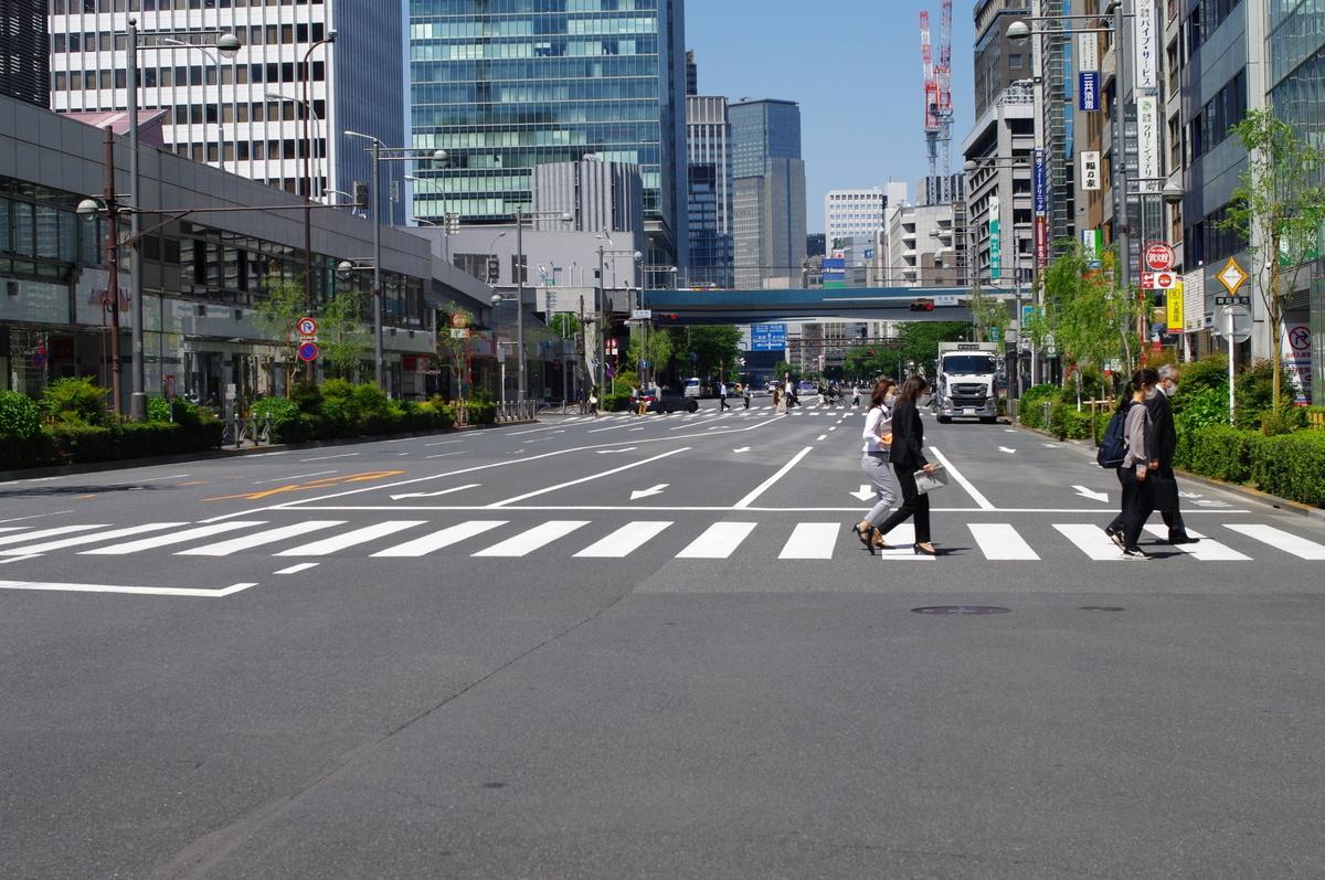 f:id:yoshinori-hoshi:20090101000335j:plain