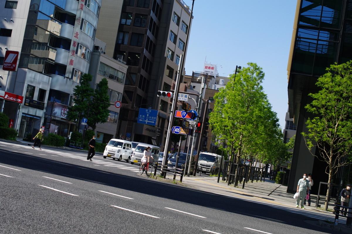 f:id:yoshinori-hoshi:20090101000505j:plain