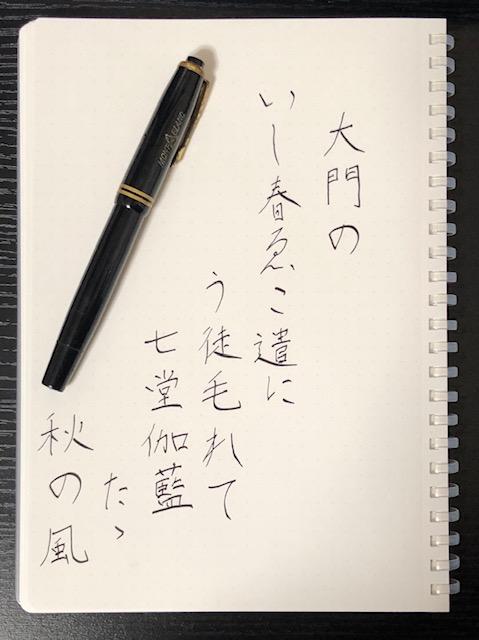 f:id:yoshinori-hoshi:20190316220913j:plain
