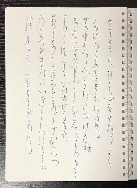 f:id:yoshinori-hoshi:20190331221424j:plain