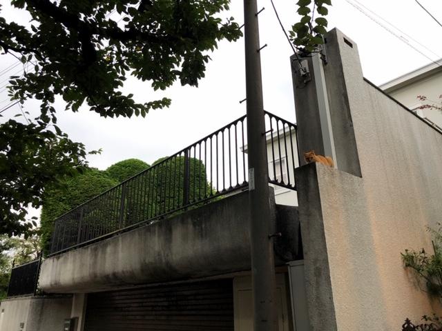 f:id:yoshinori-hoshi:20190905174142j:plain