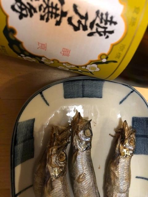 f:id:yoshinori-hoshi:20201201201509j:plain