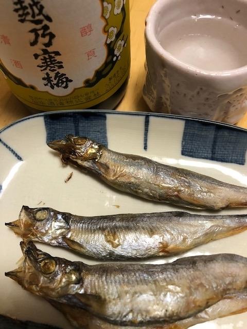 f:id:yoshinori-hoshi:20201201201537j:plain