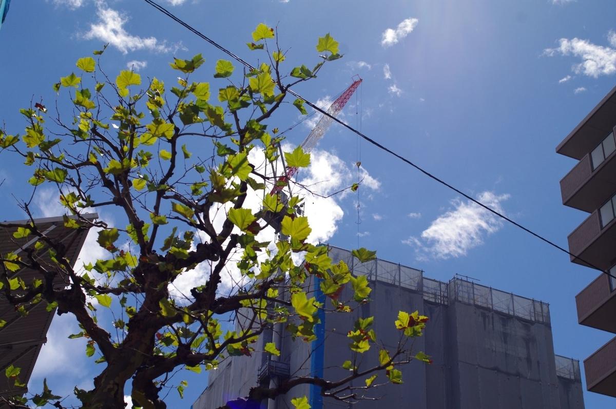 f:id:yoshinori-hoshi:20210819181927j:plain