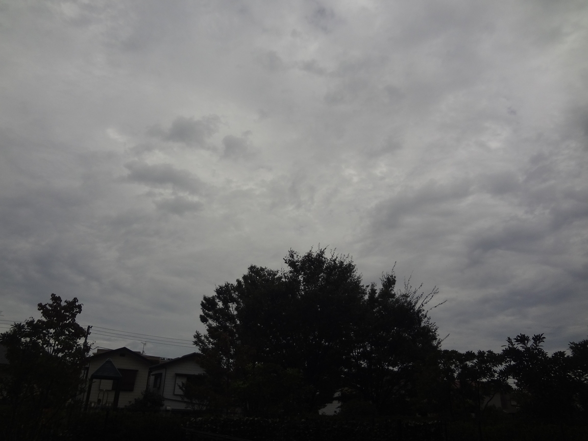 f:id:yoshinori828:20191022164017j:plain