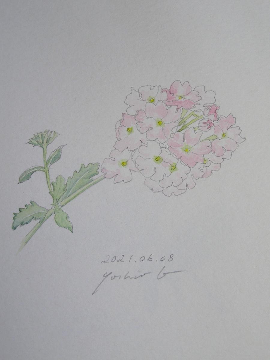 f:id:yoshio4403:20210615055126j:plain