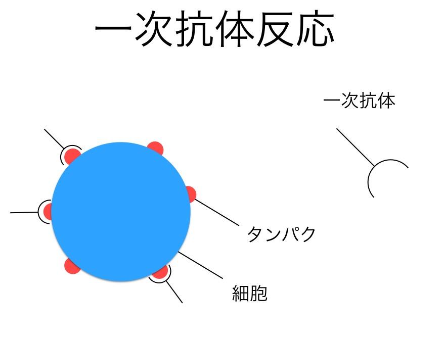 f:id:yoshitokamizato:20160713210350j:plain