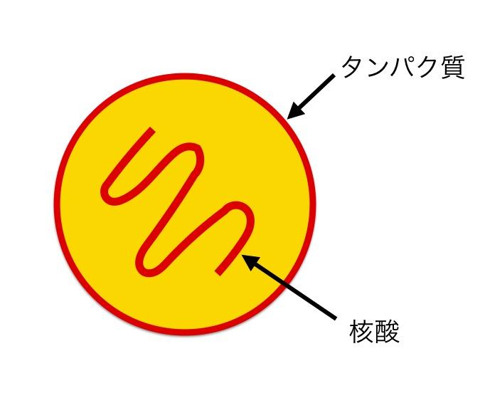 f:id:yoshitokamizato:20160727203023j:plain