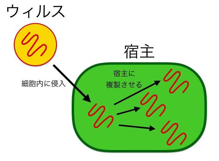 f:id:yoshitokamizato:20160727205337j:plain