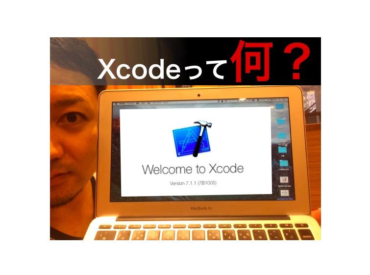 f:id:yoshitokamizato:20161123160037j:plain