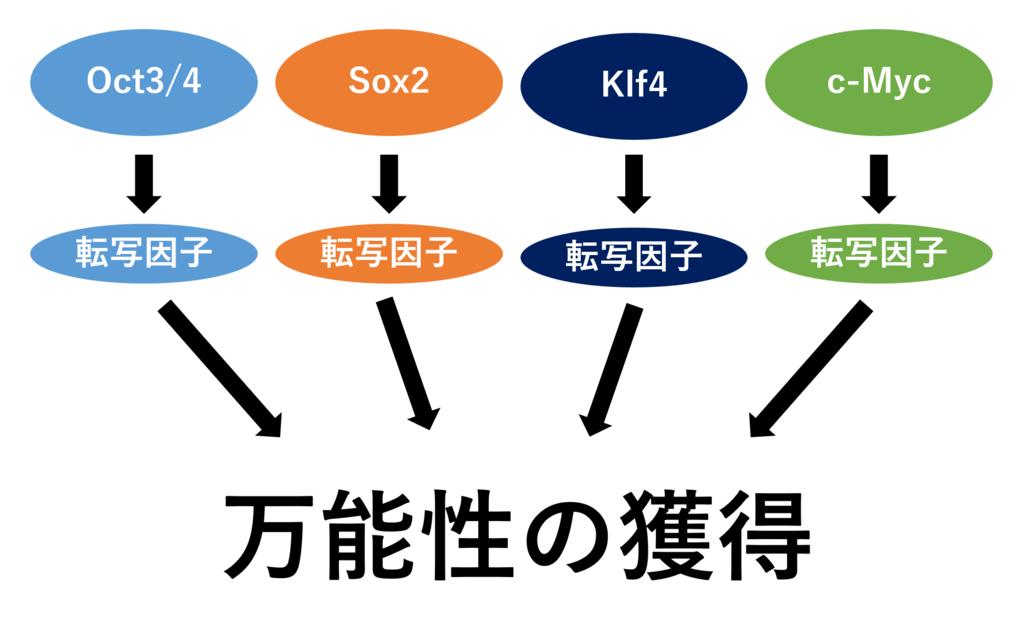f:id:yoshitokamizato:20170320200835p:plain