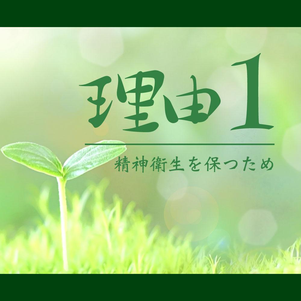 f:id:yoshitokamizato:20170513001922j:plain