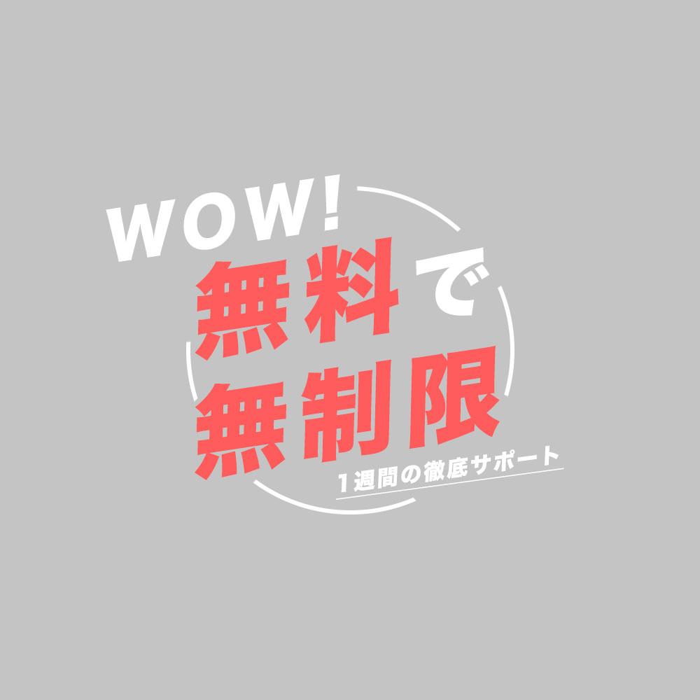 f:id:yoshitokamizato:20170604230741j:plain