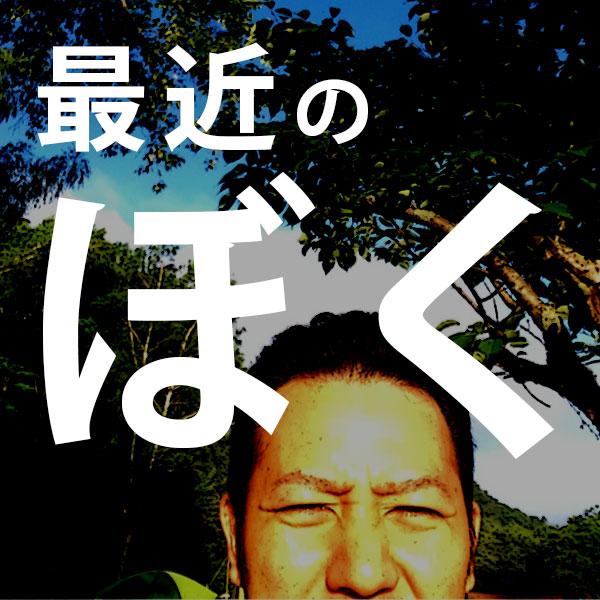 f:id:yoshitokamizato:20170723204548j:plain