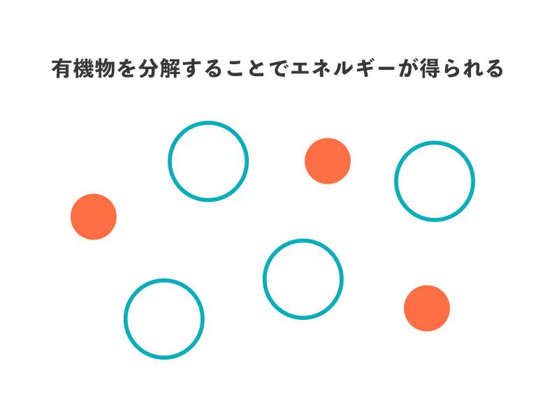 f:id:yoshitokamizato:20180730091711j:plain