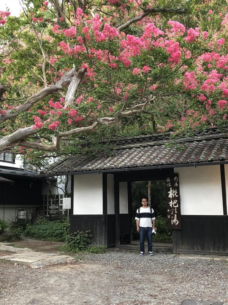 f:id:yoshitokamizato:20180903085347j:plain