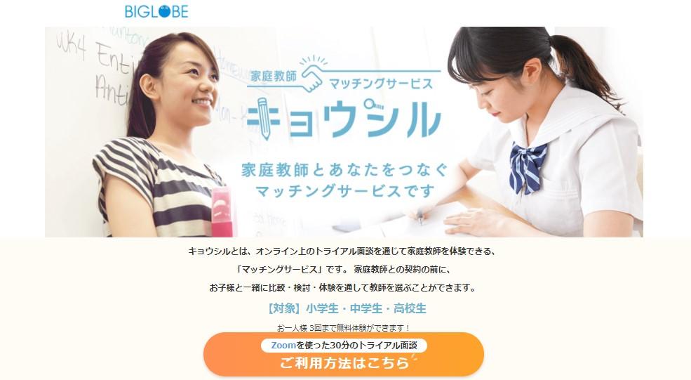 f:id:yoshitomotomo:20201113004221p:plain