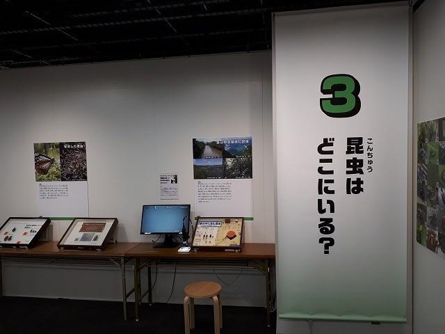 f:id:yoshitomushi:20180530214744j:image