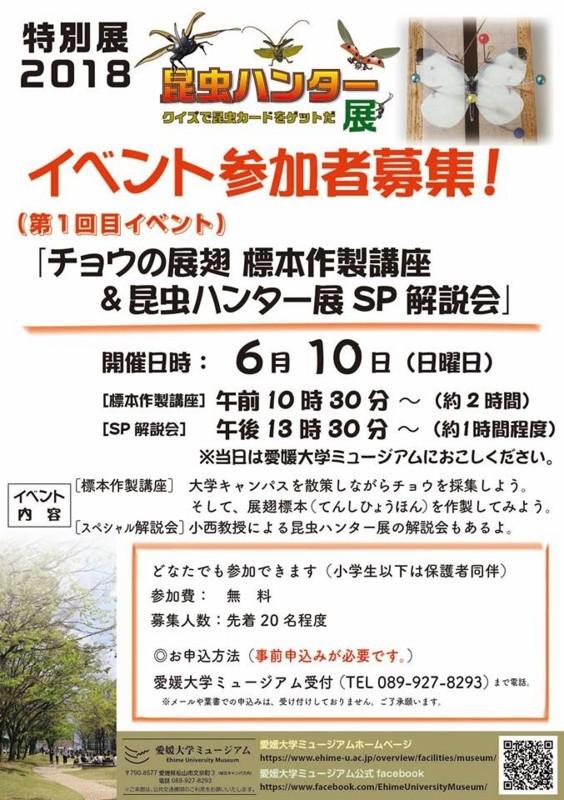 f:id:yoshitomushi:20180531222815j:image