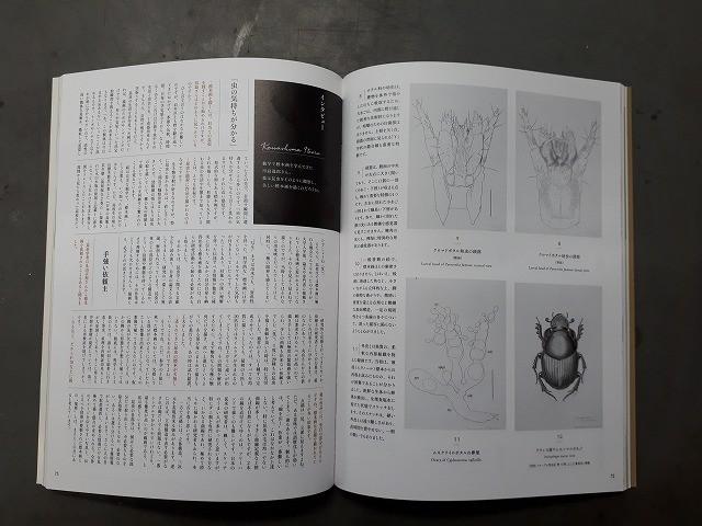 f:id:yoshitomushi:20190424090655j:plain