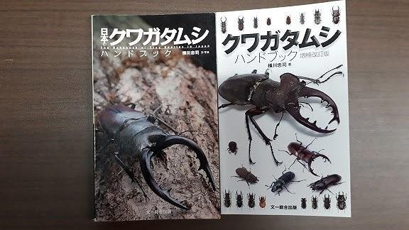 f:id:yoshitomushi:20190608104607j:plain