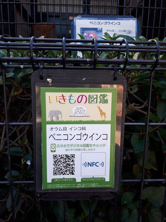 f:id:yoshitomushi:20201026083457j:plain