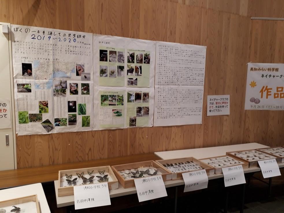 f:id:yoshitomushi:20201026083525j:plain