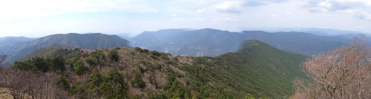 f:id:yoshitomushi:20210410064646j:plain