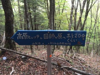 f:id:yoshixim:20160521232138j:plain
