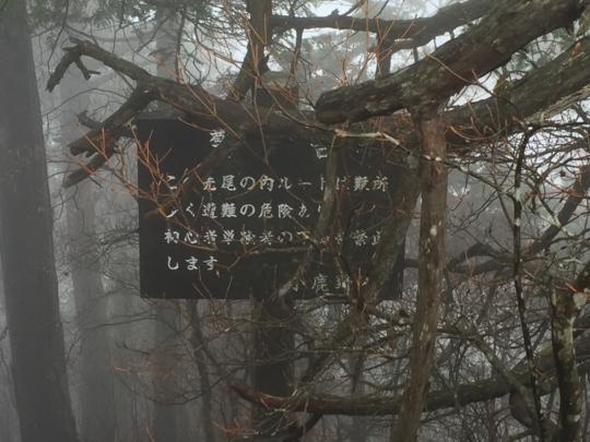 f:id:yoshixim:20161116153708j:plain