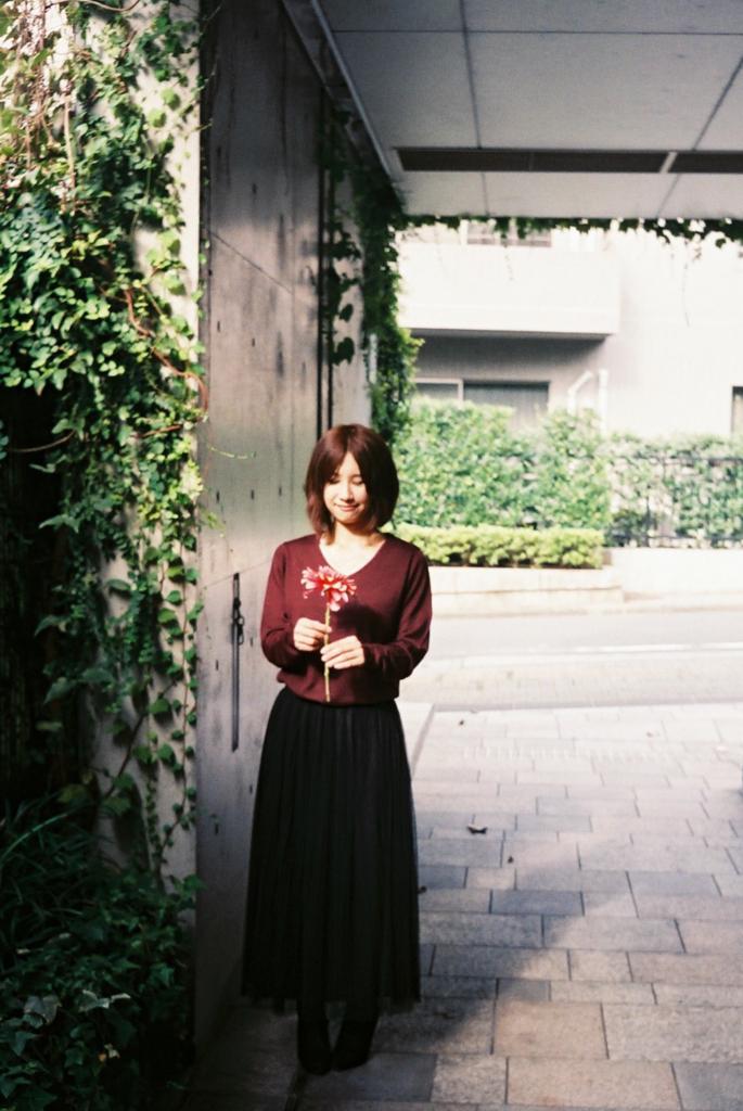 f:id:yoshiza-blog:20161106193322j:plain
