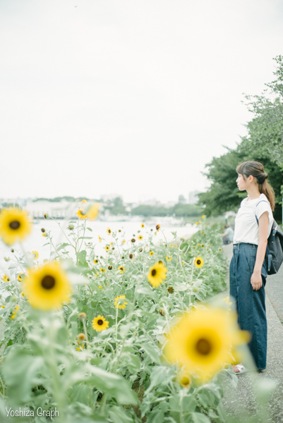 f:id:yoshiza-blog:20170727120210j:plain
