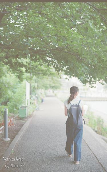 f:id:yoshiza-blog:20170727123231j:plain