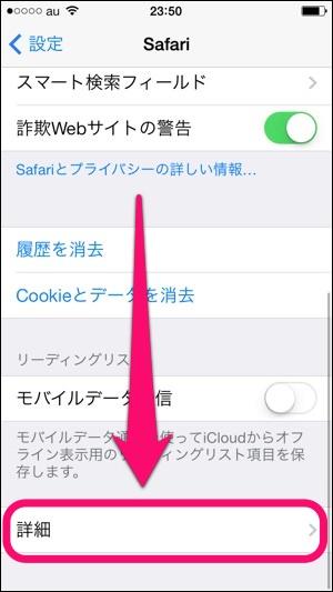 「Safari」メニュー内の「詳細」を選択