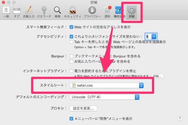 Safariの環境設定にある「詳細」画面