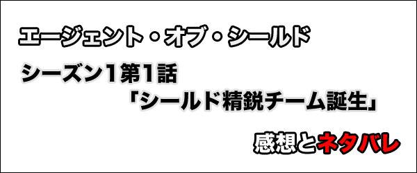 エージェント・オブ・シールド シーズン1第1話「シールド精鋭チーム誕生」感想とネタバレ