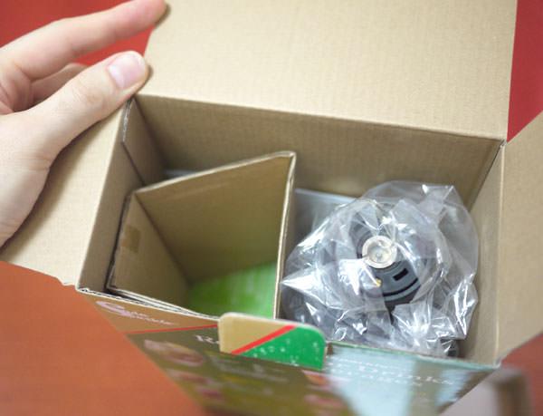 箱を開けて中を覗いてみたところ