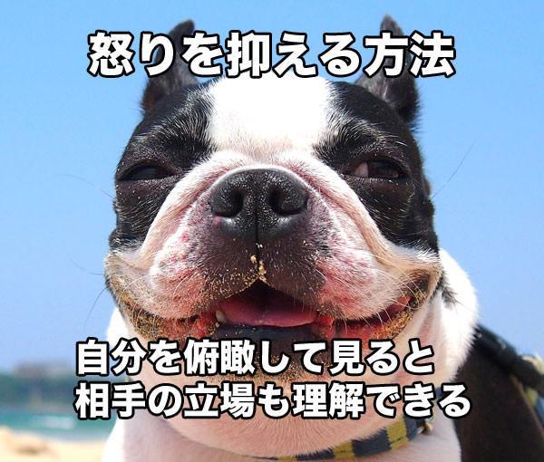 f:id:yoshizoblog:20150705152648j:plain