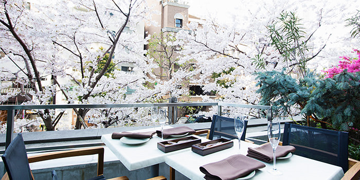 GRILL & WINE GENIE'S TOKYO